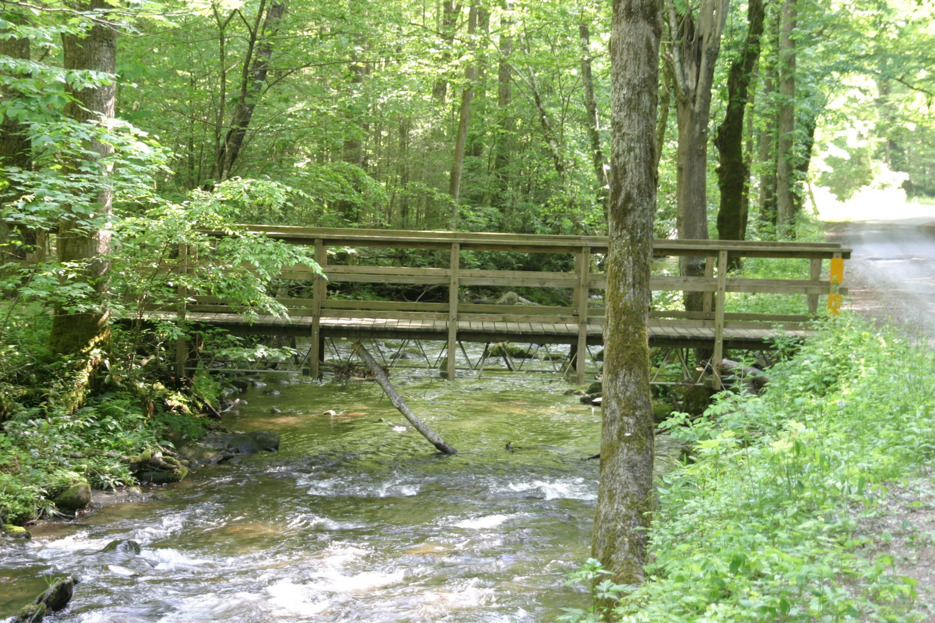 North River Foot-Bridge. Trailhead that leads to the Donley Cabin